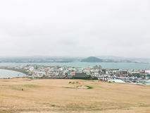 Winter landscapes in Jeju Island Stock Photography