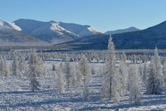 Winter landscapes of Oymyakon. Winter landscapes of Oymyakon - the pole of cold of the Northern Hemisphere. Yakutia, Russia stock photo