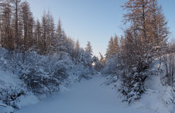 Winter landscapes Stock Photography