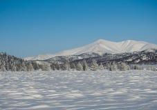 Winter landscapes Stock Images