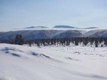 Winter landscapes Stock Image