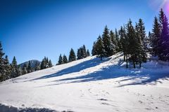 Winter landscapes in Romania. Romanian landscapes in the winter, Bicaz Chei area, Carpathian Mountains stock photography
