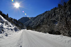Winter landscep photo. Beautiful for forest landscape photo Stock Photo