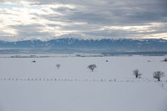 Winter-Landschaft Stockfotografie