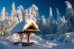Winter-Landschaft Stockfotos
