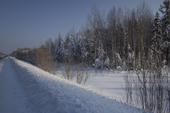Winter-Landschaft. Stockfotos