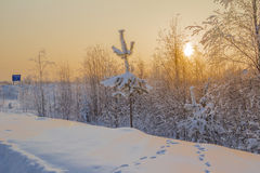 Winter-Landschaft. Lizenzfreies Stockbild