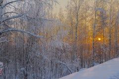 Winter-Landschaft. Lizenzfreie Stockbilder