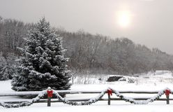 Winter-Landschaft lizenzfreies stockbild
