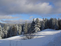 Winter-Landschaft Stockbilder