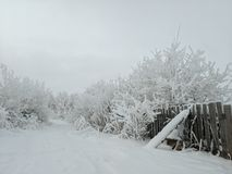 Winter-Landschaft mit dem Zaun und den Snowy-Bäumen stockfotografie
