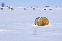 Winter-Landschaft mit Heu-Ballen stockfoto