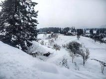 Winter-Landschaft mit Snowy-Beschaffenheit Lizenzfreie Stockfotos