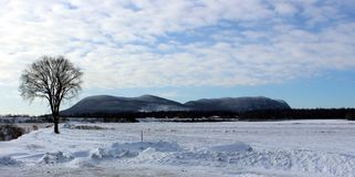 Winter-Landschaft in Quebec stockfotos