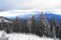 Winter-Landschaft in Rumänien stockbilder