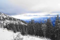 Winter-Landschaft in Rumänien lizenzfreie stockbilder