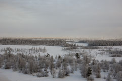 Winter landskape with forest in snow in the evening sunset. North.  Stock Photos