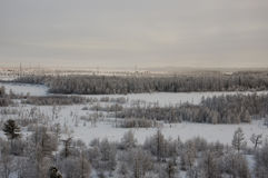 Winter landskape with forest in snow in the evening sunset. North.  Stock Image