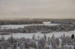 Winter landskape with forest in snow in the evening sunset. North Stock Photo