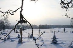 Winter am Landstandort Lizenzfreies Stockbild