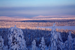 Winter lanscape Lizenzfreies Stockfoto