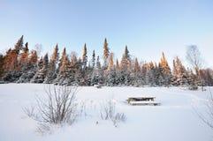 Winter Lanscape - 01 Lizenzfreie Stockfotos