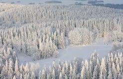 Winter lanscape in Finnland Stockfoto