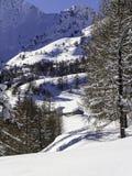 Winter lanscape Royalty Free Stock Photos
