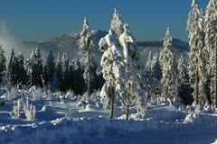 Winter Lanscape, Šumava Mountains, Eisenstein Stock Photo