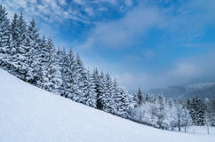 Winter lanscape Royalty Free Stock Photography