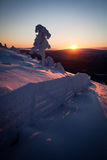 Winter in Lapland Finland Royalty Free Stock Photography