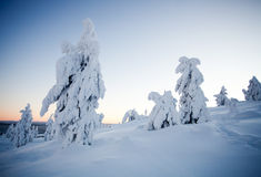 Winter in Lapland Finland Royalty Free Stock Photos