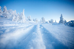 Winter in Lapland Finland. Cold winter in Lapland Finland Royalty Free Stock Photos