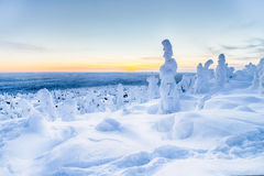 Winter at Lapland HDR Royalty Free Stock Photo