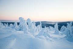 Winter in Lappland Finnland Stockfotos
