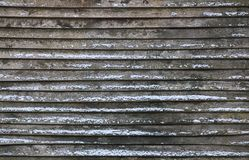 Winter Lath Texture Royalty Free Stock Images