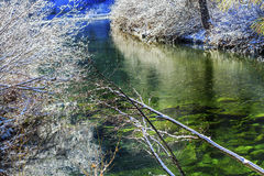 Winter Leaves Snow Ice  Wenatchee River Leavenworth Washington Royalty Free Stock Photography