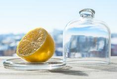 Winter lemon. Fresh lemon in opened glass flask on the table. Winter Royalty Free Stock Photography