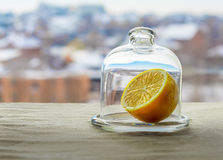Winter lemon. Juicy lemon in a closed glass flask on the table. Winter Royalty Free Stock Photos