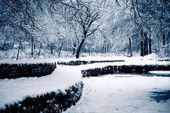 Winter lendscape Royalty Free Stock Images
