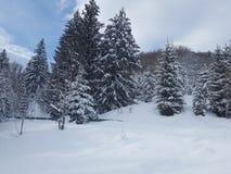 Winter,let it snow ,white. Let it snow ,mountain stock photography