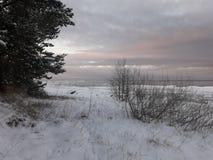 Winter in Lettland lizenzfreies stockfoto