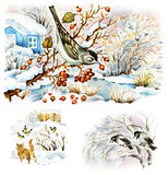 Winter life of nature. Set of nature winter images, painted in mixed technique: watercolors/ink/ gouache. Bird on the hawthorn, cat watching tomtits, crows on Stock Photo