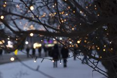 Winter lights. People is having a walk in park on a cold evening. Abstract bokeh background of city night royalty free stock photos