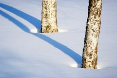 Winter lines. Deep winter shadows from the cold sun Royalty Free Stock Images