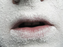 Winter lips Royalty Free Stock Image
