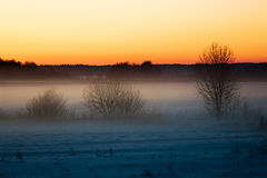 Winter in Lithuania Royalty Free Stock Images