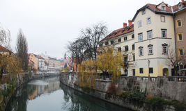 Winter Ljubljana Royalty Free Stock Photo