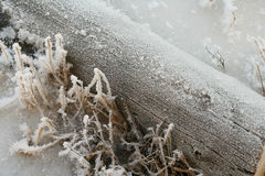 Winter log. Hoar-frost on the old log (winter background Stock Image