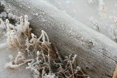 Winter log Stock Image